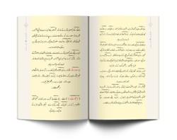 Ene ve Zerre Risaleleri (Osmanlıca) - Thumbnail